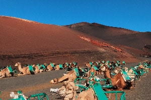 14 Unmissable Places In Lanzarote
